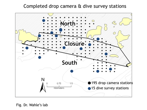 Completed drop camera & dive survey stations