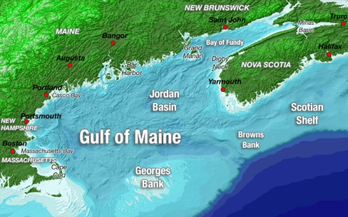 Science in the Rapidly Warming Gulf of Maine