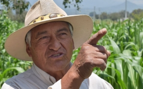Alexander Eaton: Mexican farmers are turning cow pies into proverbial gold